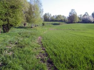 gleicher Ausschnitt der Strecke im Jahr 2011 (C) D.Pohl